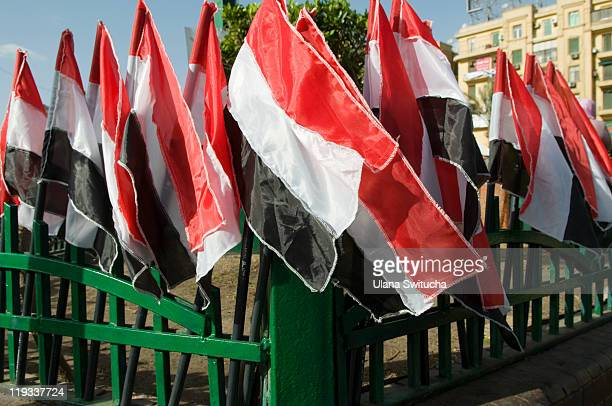 Egyptian flags