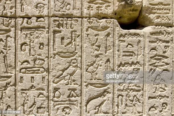 egyptian hieroglyphs at dendera temple - hieroglyphics stock pictures, royalty-free photos & images