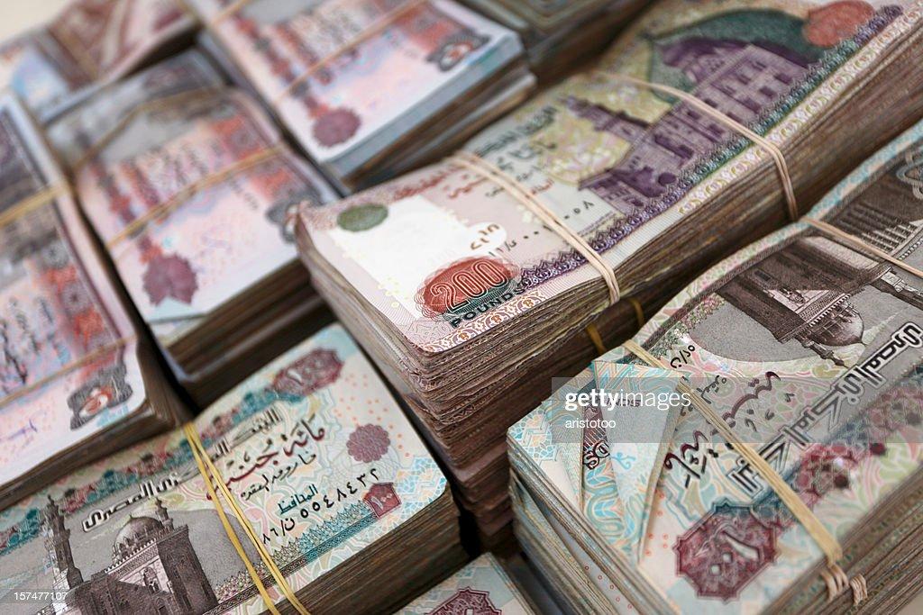 Egyptian Pounds : Stock Photo