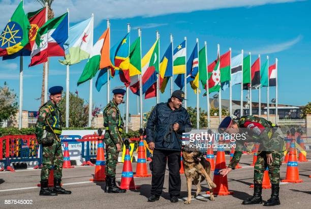 Egyptian security forces stand guard under African nations' flags at the entrance of the Africa 2017 Forum in the Red Sea resort of Sharm elSheikh on...