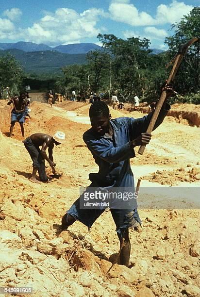 Ehemalige Soldaten beim Straßenbau mitder Spitzhacke 00031995