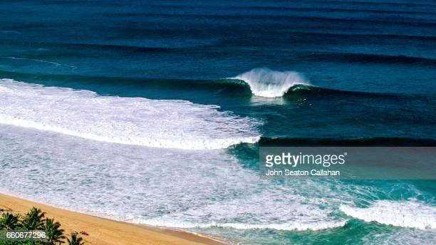 ehukai beach park - haleiwa stock photos and pictures
