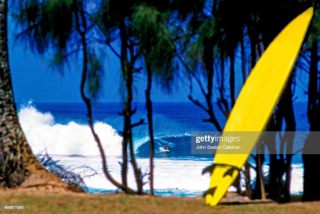 Ehukai Beach Park : Stock Photo