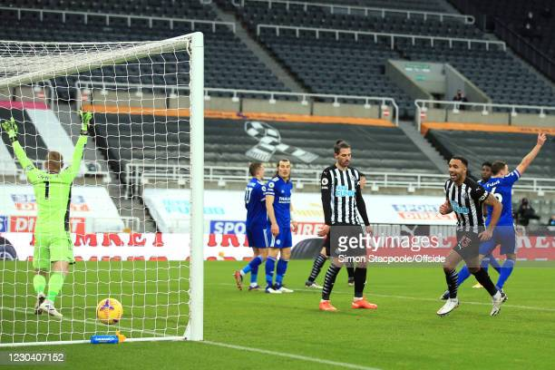 Eicester goalkeeper Kasper Schmeichel appeals against and Callum Wilson of Newcastle United celebrates a goal scored by Andy Carroll during the...
