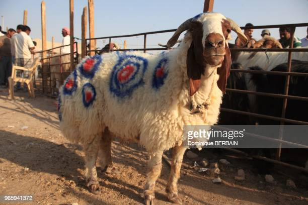 Eid alAdha also called Feast of the Sacrifice the Major Festival the Greater Eid Kurban Bayram and Bakridis an important religious holiday celebrated...