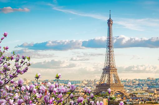 eiffel tour and Paris cityscape 1133449890