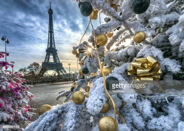 Eiffel Tower and decorated Christmas trees, Paris, France