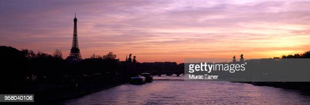 eiffel tower and pont alexandre ii bridge at sunset - pont alexandre iii photos et images de collection