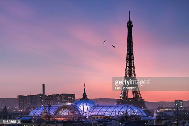eiffel tower at sunset - paris night stock pictures, royalty-free photos & images
