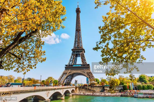 eiffel tower in paris, france - french culture stock pictures, royalty-free photos & images