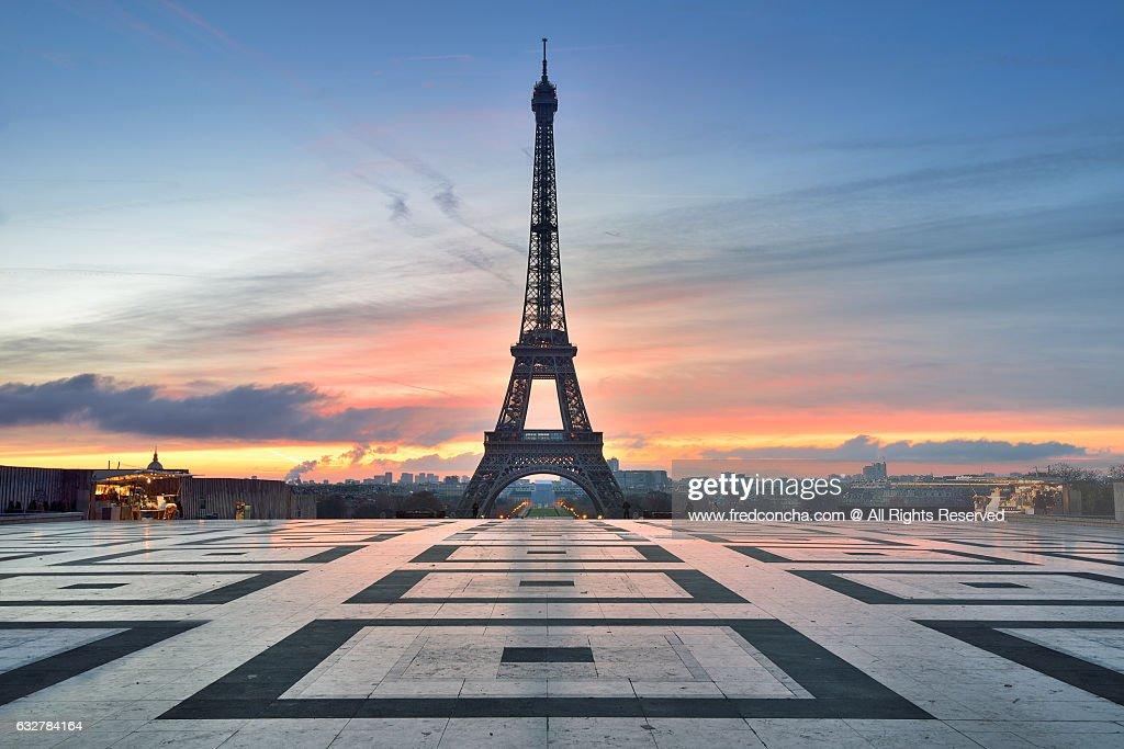 Eiffel Tower in Paris : Stock Photo