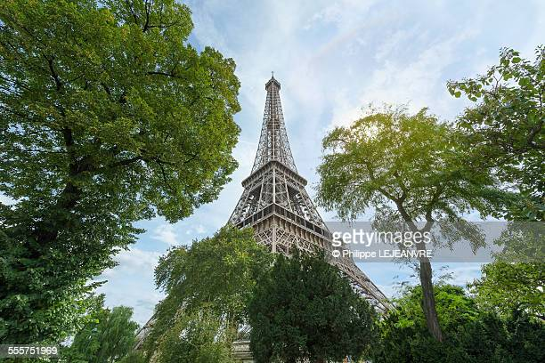 Eiffel tower surrounded by trees
