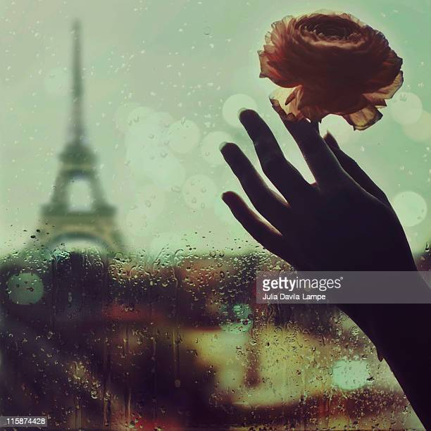 eiffel tower through  window on  rainy day - julia rose stock photos and pictures
