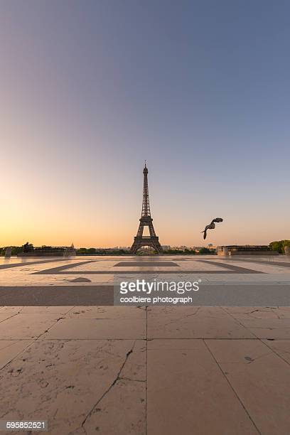 eiffel tower view from jardins de trocadero - esplanade du trocadero stock pictures, royalty-free photos & images