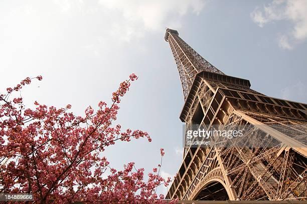 Eiffelturm mit Blumen