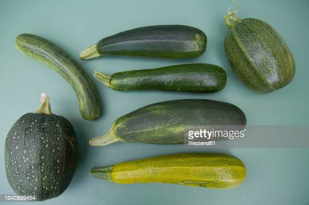 eight ball squashes and courgettes - zucchini stock pictures, royalty-free photos & images
