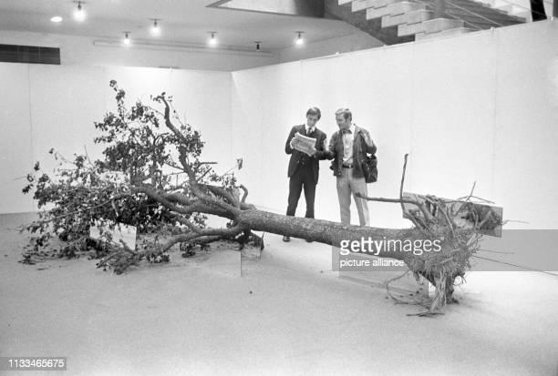 """Ein abgestorbener Baum samt Wurzeln und verdorrten Blättern als Kunstobjekt. """"Prospect 69"""", die 2. Internationale Vorschau auf die Kunst in den..."""