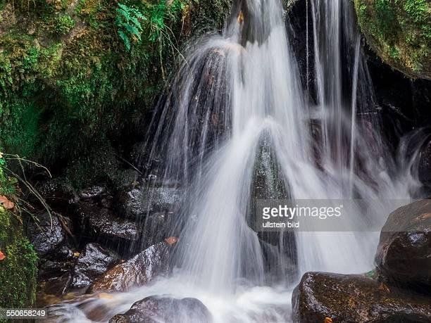 Ein Bach mit Steinen und fliessendem Wasser Landschaft erleben in der Natur