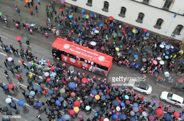 Ein Bus mit den Spielern des FC Bayern München fährt am in München nach ihrem Sieg im DFBPokalFinale gegen den VfB Stuttgart auf der Ludwigstraße...