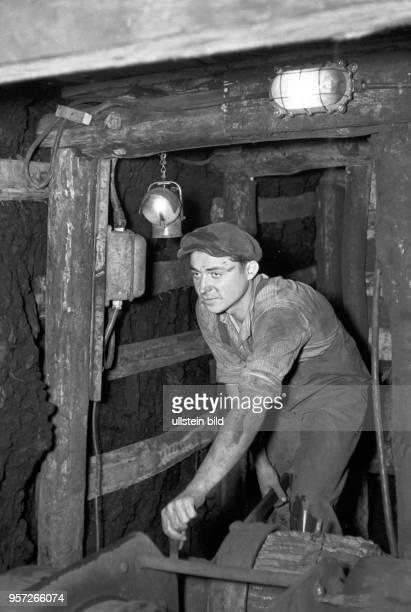 Ein Kumpel im Schacht Ernst Thälmann des Tagebau Niemtsch des Braunkohlenwerkes Franz Mehring in Brieske bei Schlabendorf beim Streckenvortrieb unter...