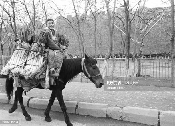 Ein kurdischer Junge transportiert auf der Strasse vor der alten Stadtmauer Lauch Gemuese auf seinem Maulpferd