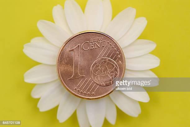 EinCentM¸nze KlimaCent ÷koCent Cent Centst¸ck Ein EuroCent M¸nze M¸nzen Geldst¸ck Geldst¸cke ÷ko Klima Klimawandel Steuer Geb¸hr Umweltsteuer...