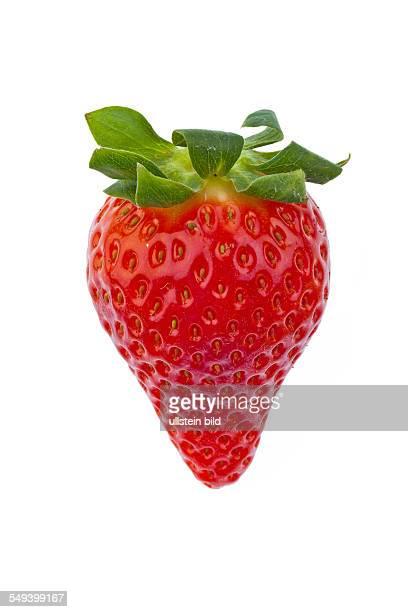 Eine Erdbeere freigestellt auf weißem Hintergrund Aufnahme im Studio von frischem Obst und Gemüse