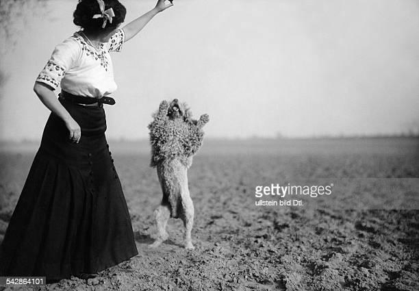 Eine Hundehalterin mit ihrem Pudel auf dem Feld, der Hund macht Männchen.- undatiert, vermutlich 1911Foto: Conrad HünichBild ist Teil einer Serie.