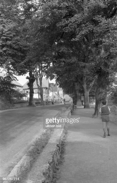 Eine Junge läuft am Straßenrand in Schierke aufgenommen 1960