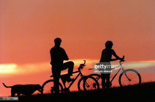 Eine kleine Pause legen zwei Fahrradfahrer mit ihrem Hund am 22.8.1997 ein, um die Abendstimmung am Wörthsee zu genießen.