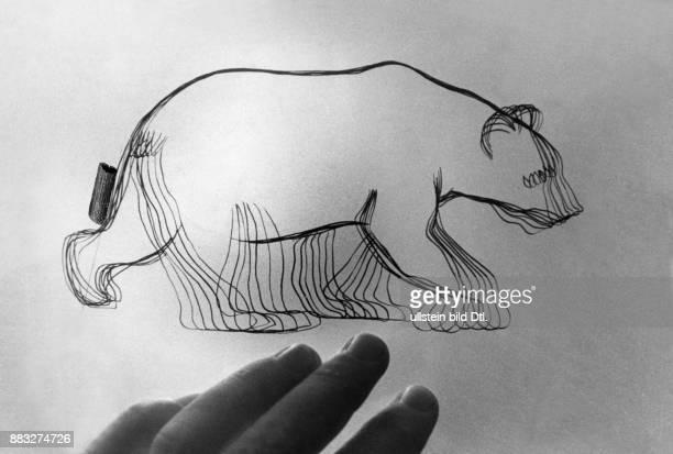 Eine Zeichnung in phasen von einem Bär ein Entwurf der aus dem Atelier der Deutschen Zeichenfilmschule stamm Hanns Hubmann Originalaufnahme im Archiv...