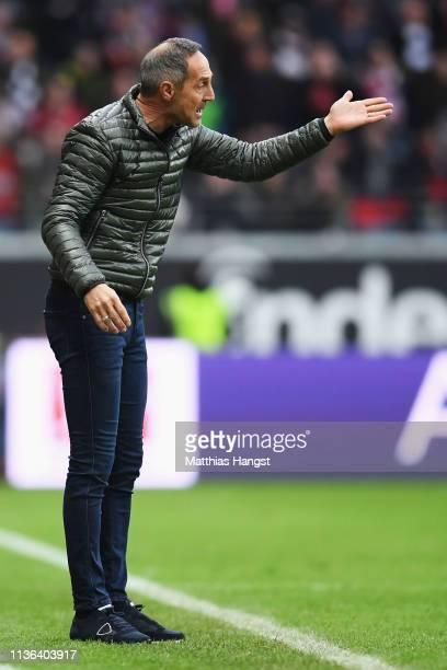 Eintracht Frankfurt Manager / Head Coach Adi Hutter looks on during the Bundesliga match between Eintracht Frankfurt and 1 FC Nuernberg at...