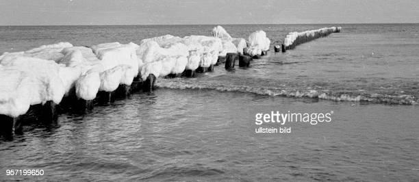 Eisbedeckte Buhne am Strand vom Ostseebad Koserow auf der Insel Usedom im Winter 1957 Foto Reinhard Kaufhold Mindere technische Qualität bedingt...