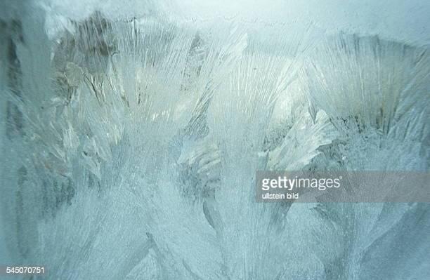 Eisblumen am Fenster 1996