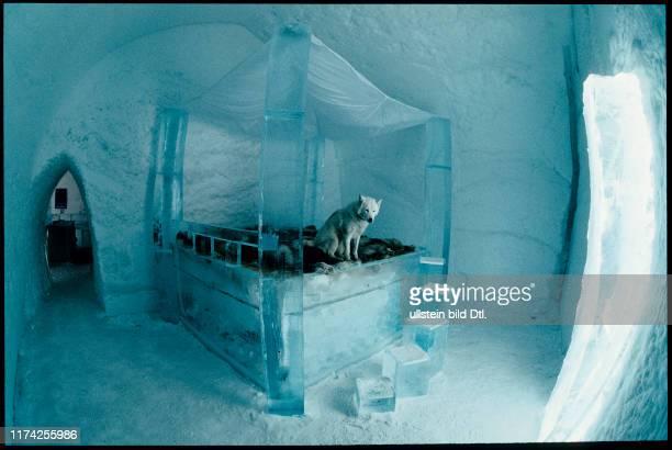 Eishotel in Nord-Schweden: Zimmer mit Himmelbett aus Eis, 1996