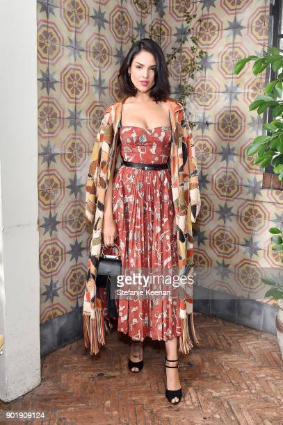 Eiza Gonzalez, wearing Dior, attends Lynn Hirschberg Celebrates W Magazine's It Girls With Dior at A.O.C on January 6, 2018 in Los Angeles,...