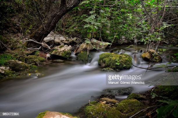 el bosque,spain - screen saver stock photos and pictures