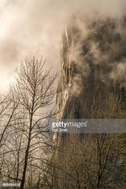 el capitan and mist - don smith stock pictures, royalty-free photos & images