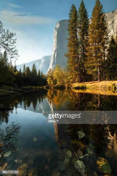 el capitan - yosemite nationalpark stock pictures, royalty-free photos & images