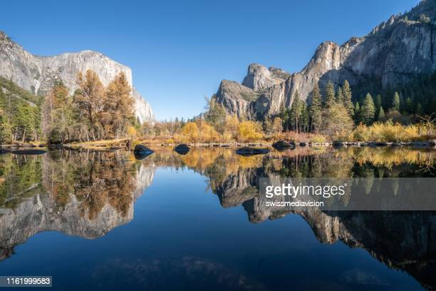 el capitan reflection on river at yosemite national park, usa in autumn with yellow and orange leaves floating on water surface - mirror lake stock pictures, royalty-free photos & images
