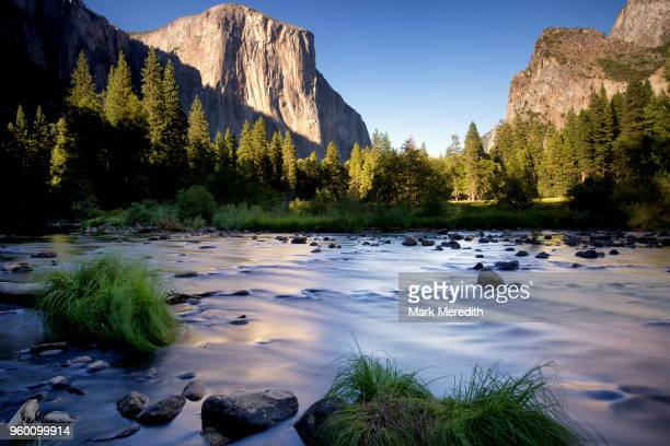 el capitan viewed from the merced river in yosemite valley - el capitan yosemite national park stock pictures, royalty-free photos & images