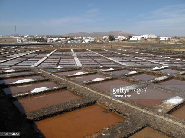 El Carmen Salt Pans near Caleta de Fuste it date back to the early 20th century and are maintained and still used to produce salt now is located...