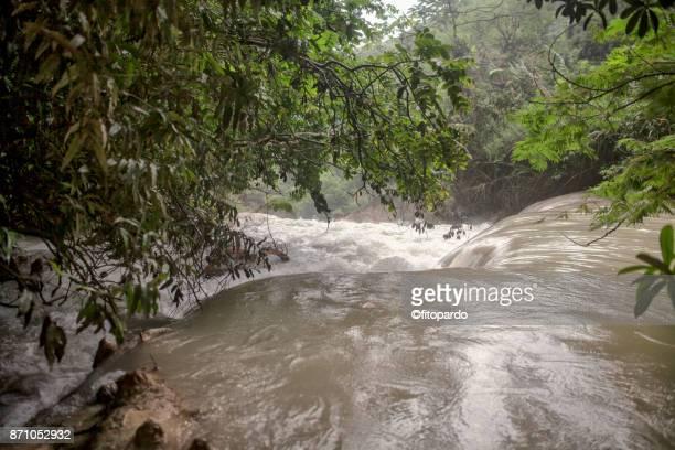el chiflón waterfall in chiapas water running strong - stroomversnelling stockfoto's en -beelden