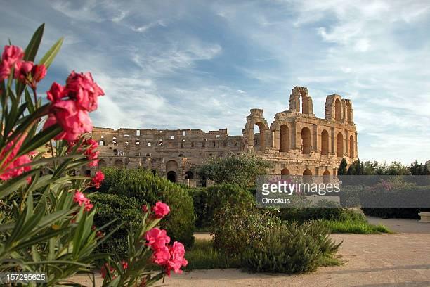 el djem coliseum, tunesien - tunesien stock-fotos und bilder