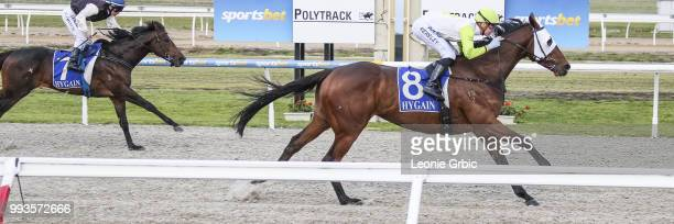 El Don ridden by Fred Kersley wins the Christmas In July Winter Challenge Synthetic Stayers Series Heat 3 at Racingcom Park Synthetic Racecourse on...