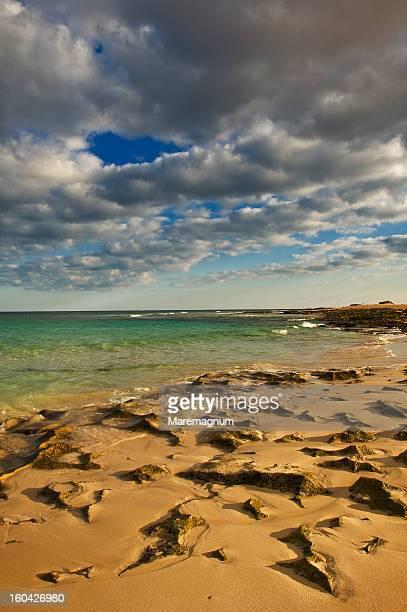 'El Jable' natural park, the beach