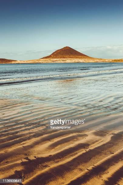 playa de el médano en tenerife - isla de tenerife fotografías e imágenes de stock