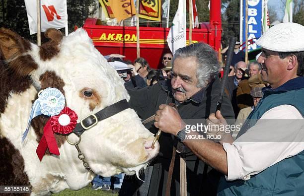 El Ministro de Ganaderia y Agricultura del Uruguay Jose Mujica premia al Gran Campeon Hereford el 06 de setiembre de 2005 durante la Exposicion Rural...