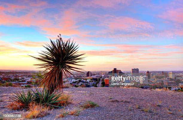 el paso, texas - texas stock pictures, royalty-free photos & images