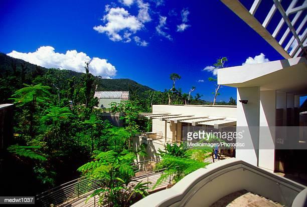 el portal visitor center at the el yunque national park, puerto rico - paisajes de puerto rico fotografías e imágenes de stock
